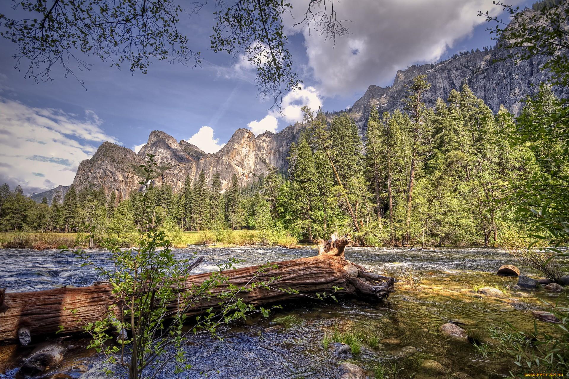 сути, дикая природа фото пейзаж абри сарнавишт